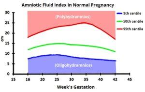 不同孕周羊水指数变化